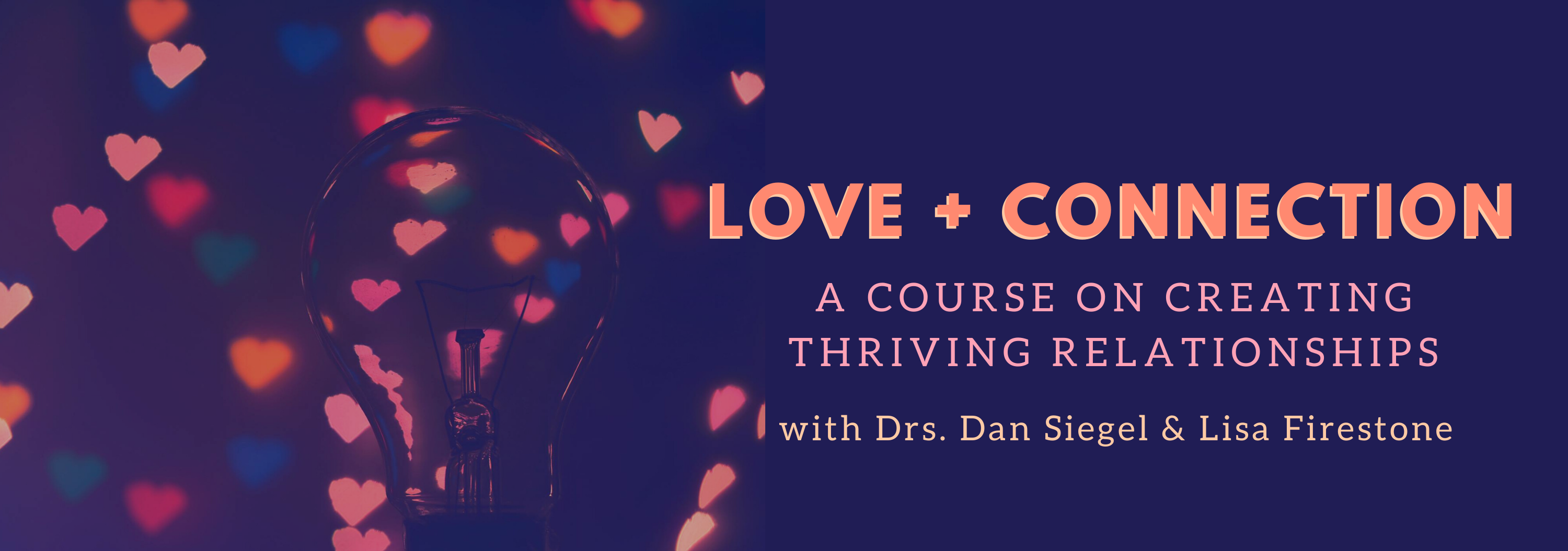 love + connection ecourse dan siegel lisa firestone